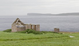 Ruined croft with Duncansby Head in the distance