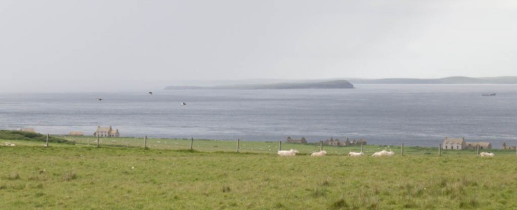 Crofts with Swona and Orkney in the distance